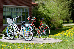 Bicycles in Spring