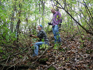 Land stewardship interns Kimberly Stocks and Jake Wittman clearing invasive European buckthorn from Hickory Ridge Woods.