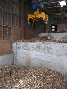The wood chips that get fed to the district heating plant.