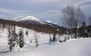 "Kuznetsk Alatau, Siberia (by Dmitry A. Mottl, from Wikimedia Commons)<a href=""/reason/images/320895_orig.jpg"" title=""High res"">∝</a>"
