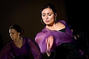 "Flamenco, Spain, by Ivan Peplov, from Wikimedia Commons<a href=""/reason/images/338310_orig.jpg"" title=""High res"">∝</a>"