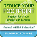 NWF Campus Climate Fellowships