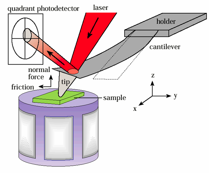 A schematic of the atomic force microscope ccuart Image collections