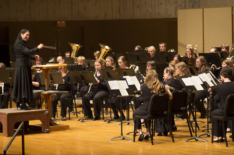 Wind and Percussion Ensemble 2013