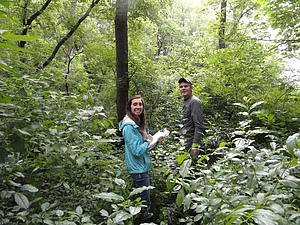Hannah Garry and Brennen Reysack collecting data from long-term monitoring plots in Flying Squirrel Forest.