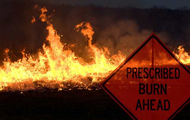 Prescribed Burn Sign in Anderson Prairie