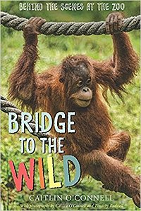 "Cover of ""Bridge to the Wild"""