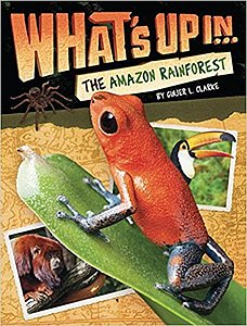 What's up in…the Amazon Rainforest