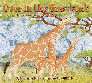 Over the Grasslands: An African Savanna