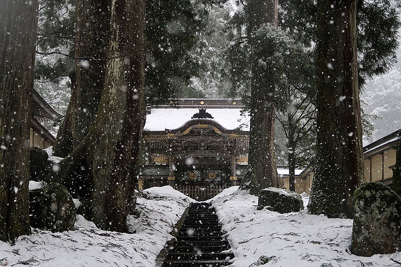 "Celia Gould '19, an accounting and data science double major, spent J-term 2018 with the Working Japan: Religion and Corporate Culture in Japan course. This photo of Eihei-ji, a Buddhist temple in the mountains of the Fukui Prefecture, was taken by her Icelandic classmate, Áskell Jónsson, after a period of long meditation. Gould says, ""We were not permitted to leave the monastery or look outdoors for three days, so the sight was even more beautiful to all of us who had missed being able to see nature for such a long time."""