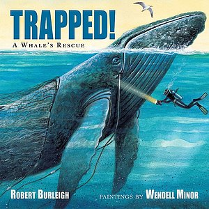 Trapped! A Whales Rescue