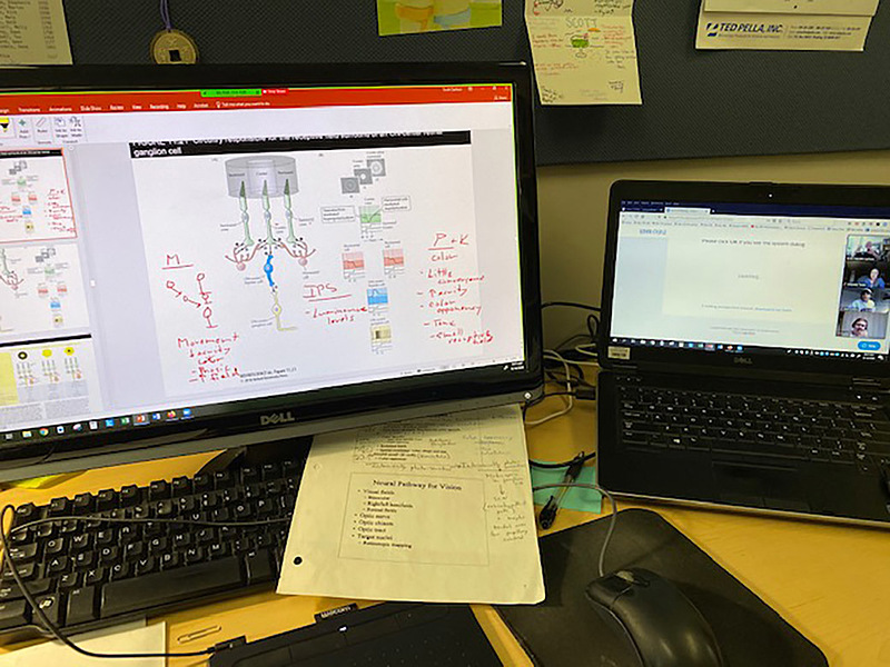 This is part of professor of biology Scott Carlson's remote-teaching setup. He works with tools CELT staff trained him on so that during class discussion, he can write details on his shared screen, draw on figures to emphasize parts, and move between files easily.