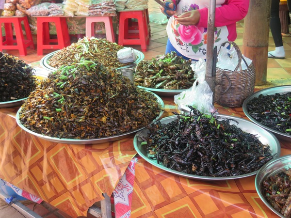 "A wide variety of fried insects for the students to choose as snacks.<a href=""/reason/images/740050_orig.jpg"" title=""High res"">∝</a>"