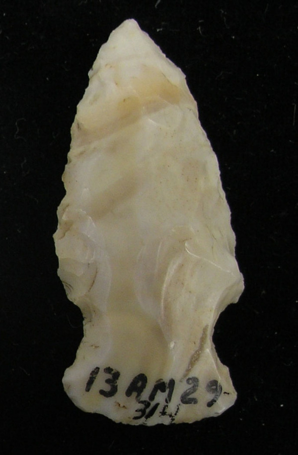 An Atalissa projectile point collected from Allamakee County, Iowa. Projectile points are chipped stone tools that are used for hunting or fishing.