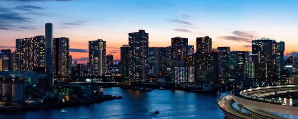 "The Tokyo skyline.<a href=""/reason/images/802116_orig.jpg"" title=""High res"">∝</a>"