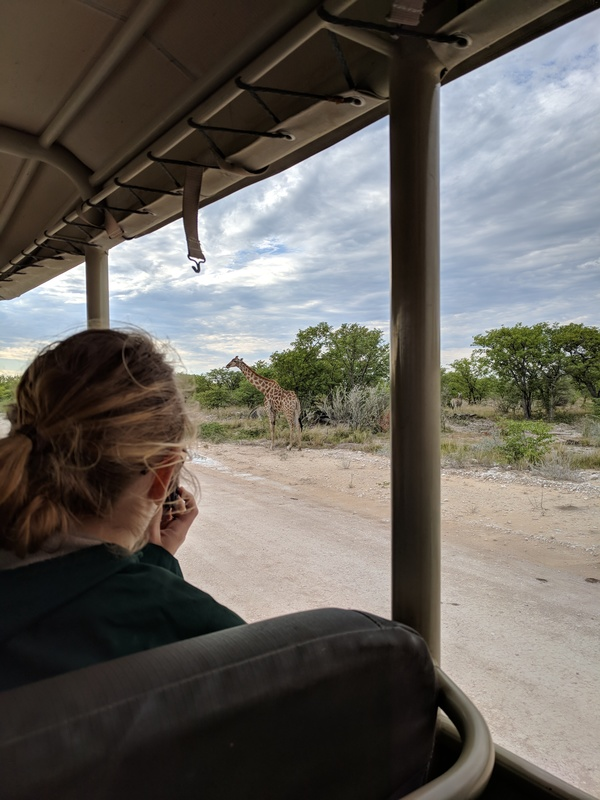 "Hannah spots a giraffe from our Jeep during the safari<a href=""/reason/images/801123_orig.jpg"" title=""High res"">∝</a>"