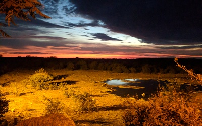The view of an African sunset from the watering hole