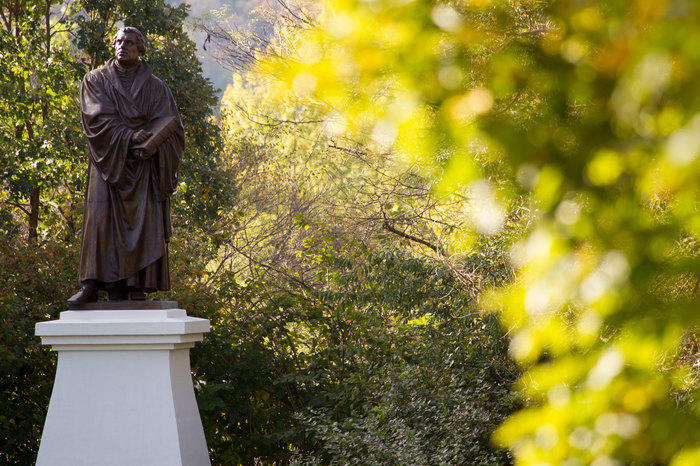 Martin Luther statue in fall