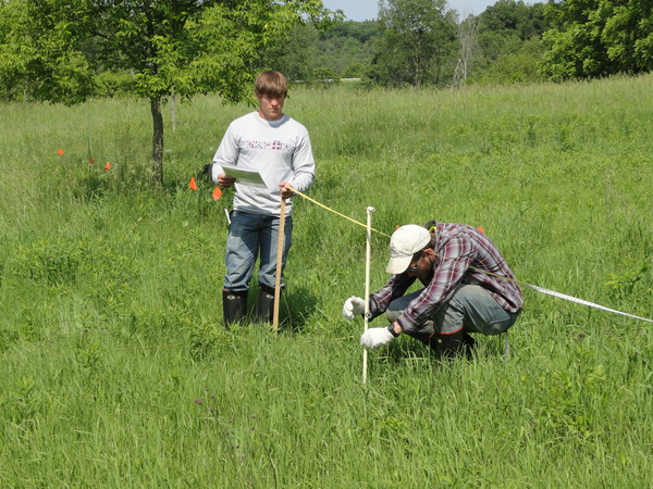 Environmental Studies majors Devin Gilbertson ('14) and Brian Eachus ('15) collect data for ecological restoration research on invasive species management.