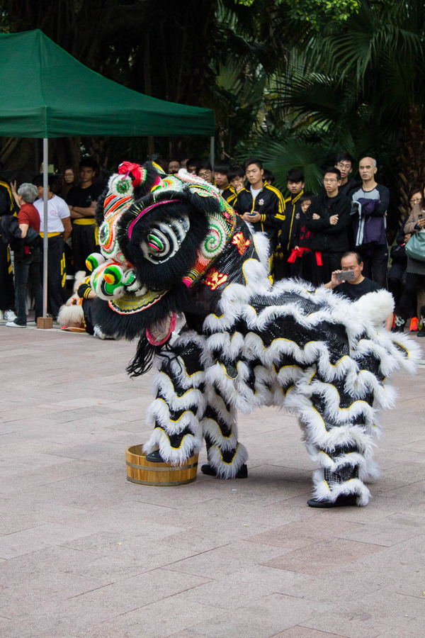"Dancing Lion at the Kung Fu demonstration in Kowloon Park<a href=""/reason/images/597203_orig.jpg"" title=""High res"">∝</a>"