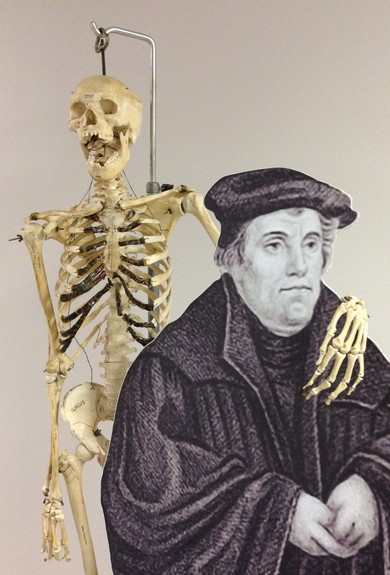 Martin Luther loves anatomy!