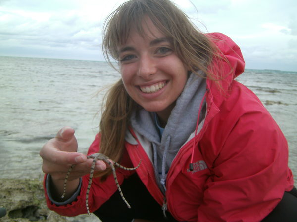 "Nicole's new brittle star friend<a href=""/reason/images/524268_orig.jpg"" title=""High res"">&prop;</a>"
