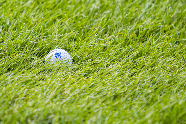 A golf ball with the Luther Norse logo printed on it lays in the grass.