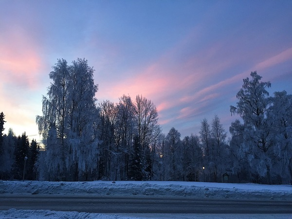 "Cotton candy skies and frosty trees<a href=""/reason/images/742381_orig.jpg"" title=""High res"">∝</a>"