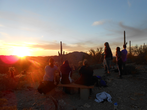"Sunset at Organ Pipe National Monument<a href=""/reason/images/523385_orig.jpg"" title=""High res"">&prop;</a>"