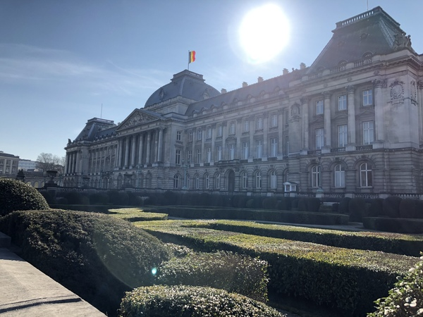 "Above you will see the Royal Palace in Brussels. It is gorgeous and just across from it is a large park that we imagined would be beautiful in the Spring.<a href=""/reason/images/806417_orig.jpg"" title=""High res"">∝</a>"