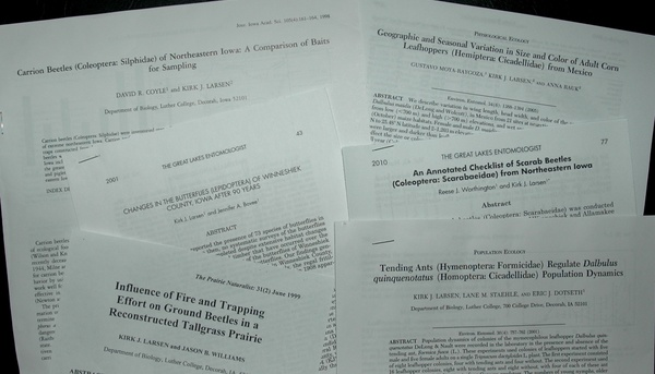 Some of the Luther entomology lab peer-reviewed publications with Luther students as coauthors.