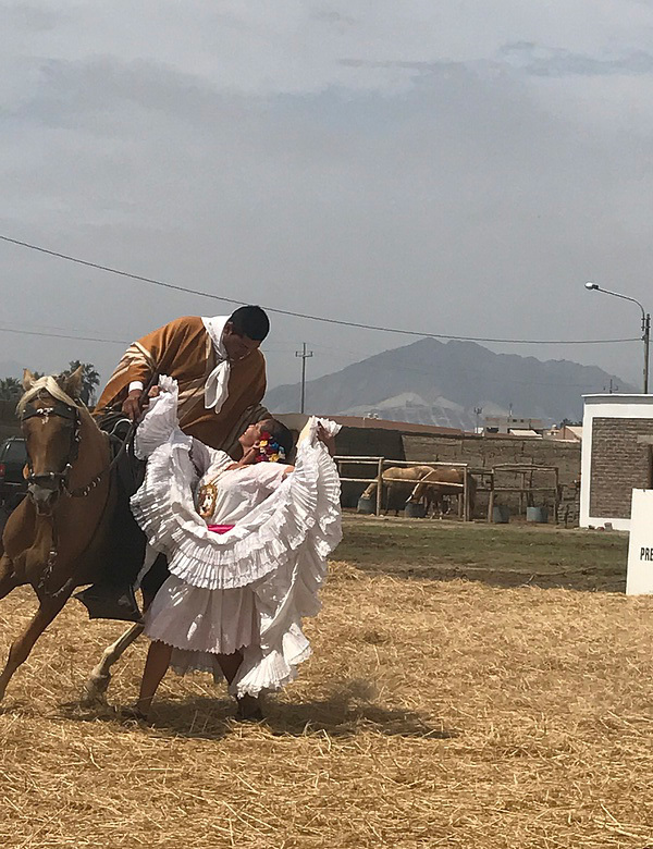 Watching Traditional Trujillo Marinera Dancing with horses!