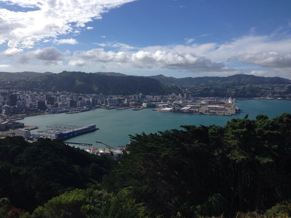 "Hello Wellington!<a href=""/reason/images/520456_orig.jpg"" title=""High res"">&prop;</a>"