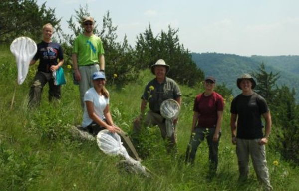 2013 Summer Entomology Research Group