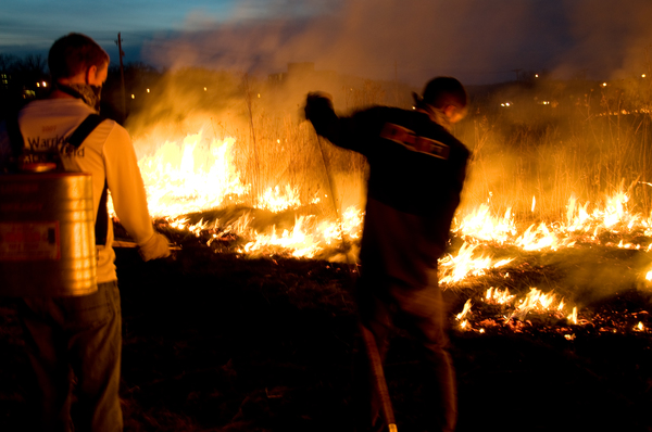 "Luther students tend prairie burn<a href=""/reason/images/276484_orig.jpg"" title=""High res"">∝</a>"