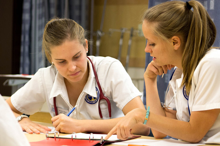 Nursing students discussing course material.