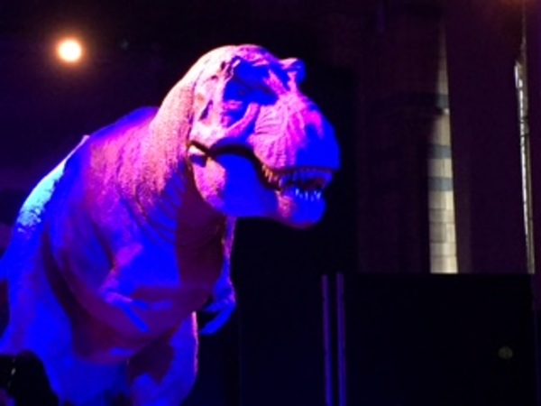 The animatronic T-Rex from the Natural History Museum