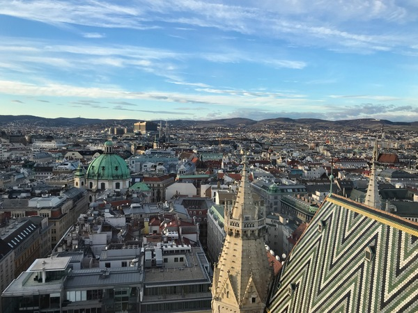 "Vienna from the tower of St. Stephen's<a href=""/reason/images/796525_orig.jpg"" title=""High res"">∝</a>"
