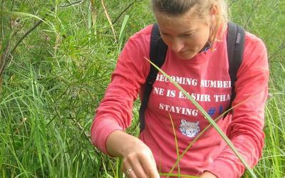Anna Burke, Luther College class of 2016, completing field work at Freeport Marsh.