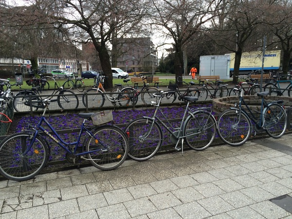 "Photo of bikes locked up near the school that Alison Gau goes to in Germany.<a href=""/reason/images/690558_orig.jpg"" title=""High res"">&prop;</a>"