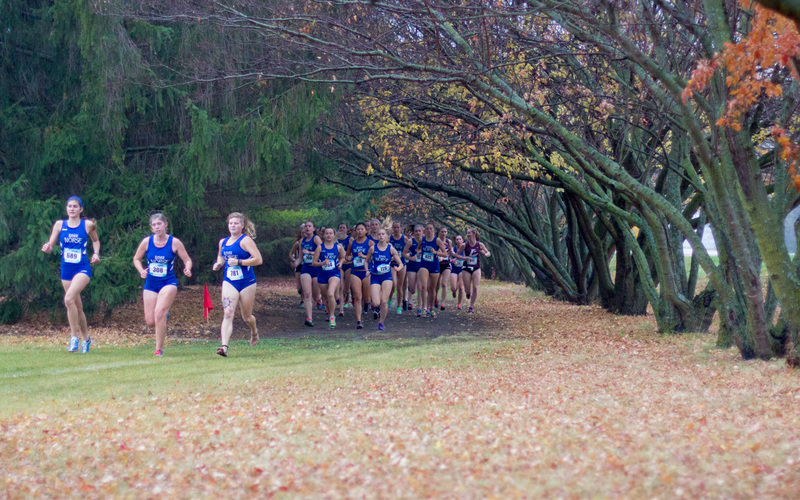 Luther runners compete in a dual meet while enjoying fall colors.
