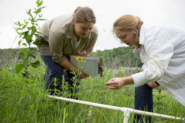 Students conduct plant community sampling in Anderson Prairie.
