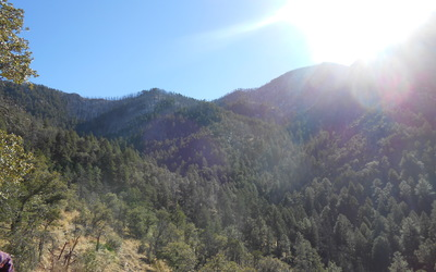 Hike through Florida Canyon in the Santa Rita Experimental Range