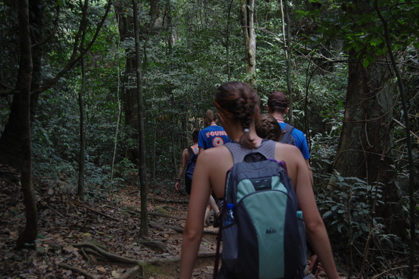 "Students enjoy a hike through the dense rainforest of Kakum National Park<a href=""/reason/images/742712_orig.jpg"" title=""High res"">∝</a>"