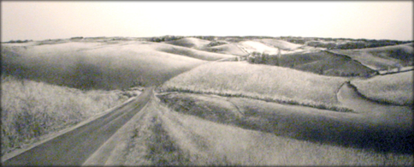 Barbara Fedeler<br /> South of Highway 56 near Elkader<br /> Willow charcoal
