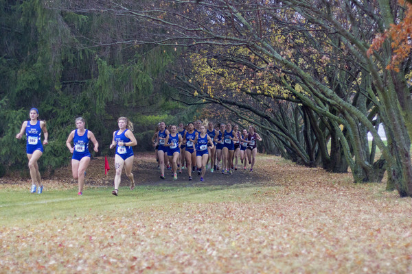 Luther runners follow their race route through a forested area.