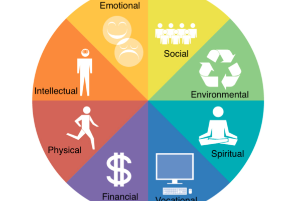 Dimensions of wellness include: physical, diversity, emotional, spiritual, intellectual, environmental, occupational, and social.