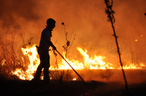 Night prescribed burn in Anderson Prairie.