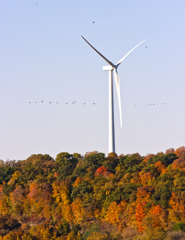 "Luther College Wind Turbine<a href=""/reason/images/361836_orig.jpg"" title=""High res"">∝</a>"