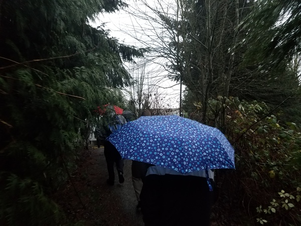 "A rainy walk to Microsoft headquarters<a href=""/reason/images/797890_orig.jpg"" title=""High res"">∝</a>"